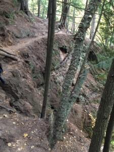 Ledge Along Trail